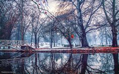 """remix warm"" o by ekstradicija.deviantart.com on @deviantART  #remix #warm #winter #forest #water #snow #leaves #read #magic #place #cold"
