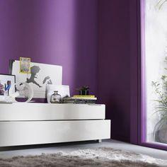 une peinture salon couleur prune pour un salon contemporain - Salon Noir Blanc Violet