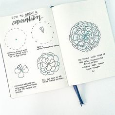 Happy Friday! Here is a step by step tutorial on how to draw a carnation   Have fun drawing this week and tag your flowers with #bonjournal so i can see☺   I'm so excited that @inkbyjeng will be joining me in posting tutorials each week!  Look out for her tutorial some time tomorrow!