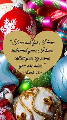 Fear Not. Mildred Williams · Prayer RequestPrayer BoardBible ScripturesMildred  WilliamsSodaChristmas TimeChristmas IdeasCatholicGod Jesus