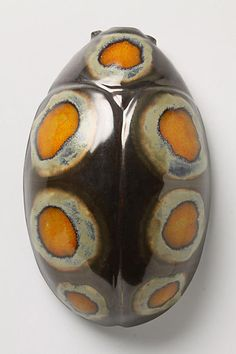 Spotted Beetle By Thomas Eyck - anthropologie.com
