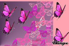 gifs borboletas animados