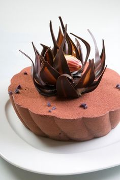 Chocolate flower cake by Chef Chris Lambrou www.bakedoctor.com
