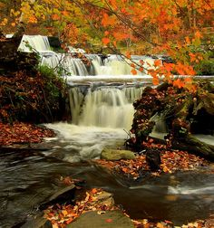 Along Shohola Creek, enjoy the numerous cascading falls, deep holes and steep ledges where you can find some of the best views of #FallinPA. The nearby Shohola Falls Inn offers a quiet, secluded atmosphere surrounded by 11,000 plus acres of state woodlands perfect for hunting and fishing.