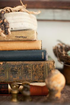 Stack of books with the rock and driftwood on top. Little Women