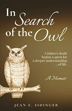 #Book Review of #InSearchoftheOwl from #ReadersFavorite Reviewed by Vincent Dublado for Readers' Favorite