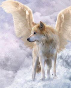 wolf with wings