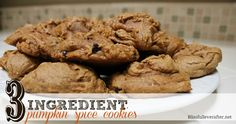 {3 Ingredient} Pumpkin Chocolate Chip Cookies - Blissfully Ever After