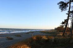 Gigantisch schön heute wieder unsere #Ostsee 😍  #AnjedemverdammtenMorgen #Sonnenaufgang #sonne #blauerhimmel #herbst #yesvember #herbst2016 #november #November2016 #warnemünde #meer #ocean #balticsea #strand #küstenwald #ostseeurlaub #herbsturlaub