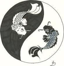 Ying yang KOI