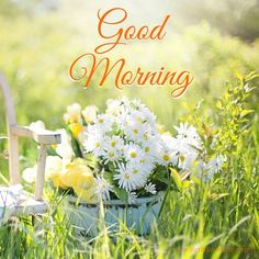 Looking for for images for good morning handsome?Check out the post right here for cool good morning handsome inspiration. These entertaining images will make you happy. Good Morning Monday Images, Good Morning Funny, Good Morning Sunshine, Good Morning Picture, Good Morning Flowers, Good Morning Good Night, Morning Pictures, Good Morning Wishes, Happy Morning