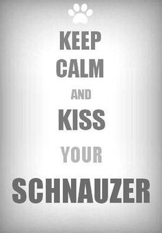 """I was torn between pinning this to my """"Keep Calm"""" board or my Schnauzer board  - what a problem to have, eh? ;)"""