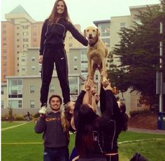 This dog is better than most flyers... #cheer