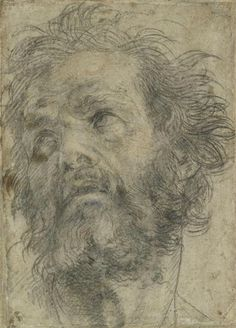 Andrea del Sarto (Andrea d' Agnolo) (attributed to), Italian, Head of a Man Looking Up, Ashmolean Museum, University of Oxford. Chalk Drawings, Art Drawings, Man Looking Up, High Renaissance, Portrait Sketches, Drawing Portraits, Daily Drawing, How To Draw Hair, Old Master