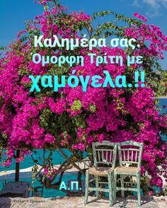 Santorini, Greece, Neon Signs, Greece Country, Santorini Caldera