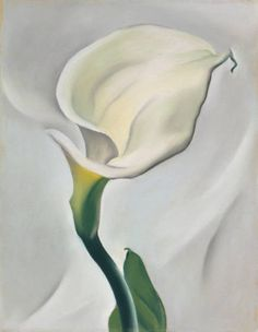 Georgia O'Keeffe - Calla Lily Turned Away, 1923, pastel on paper