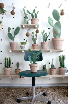 Cacti are chic! #style #LoveNature