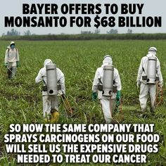 Bayer offers to buy Monsanto for $68 billion - so now the same company that sprays carcinogens on our food will sell us the expensive drugs needed to treat our cancer:(