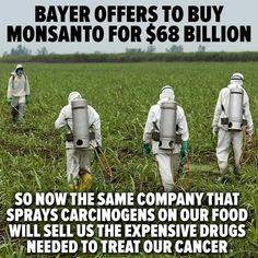 Bayer The spray treatment plan
