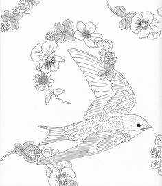 the 488 best color pages stencils templates patterns images on