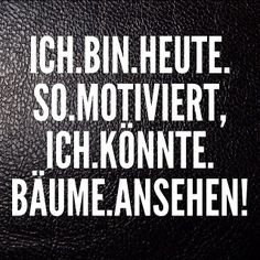 Ich könnte Bäume ansehen. Some Quotes, Words Quotes, Sayings, German Words, Good Jokes, Word Of The Day, Just Smile, Statements, True Words