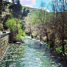 And the river Barada run through Damascus.