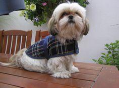 My new tartan cosy coat