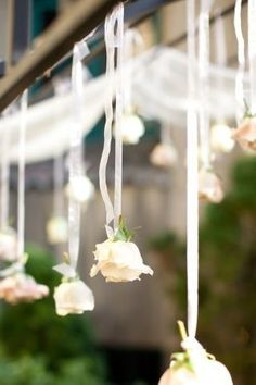 LOVE this! -- Would look great intermixed with hanging bottles suspended around a pergola's edge -- OR hanging from tree branches!