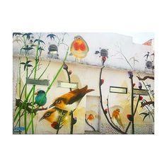 Amé este mural en el Barrio Chino . . . #hallazgosurbanos #hallazgos #streetart #arteurbano #artecallejero #murales #mural #muralart #muralescallejeros #pajaros #aves #flores #barriochino #belgrano #chinatown #buenosaires #arribeños #callearribeños #colores #color #pintura #muraleshermosos