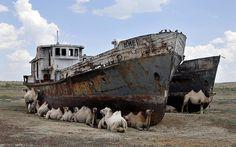 DE TODO UN POCO: Desaparece el Mar de Aral, el cuarto lago mas gran...