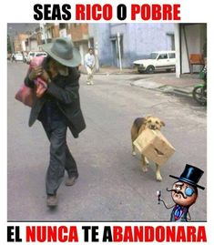 Ñoooo q sad😭 Cute Baby Animals, Animals And Pets, Funny Animals, Cute Puppies, Cute Dogs, My Animal, Animal Memes, I Love Dogs, Funny Dogs