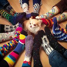 That's the spirit 🎄 🌈 🐶 🎈Thanks @anupupu 📸 #BallonetSocks #london #ballonet #socks #sockgame #happyfeet #colorful #fun #feet #socksoftheday #socksofinstagram #fashion #style #socklover #sockstyle #menstyle #mensaccessory #happyholidays  #dogsofinstagram #family #familygoals #familygathering #finnishfamily #finland