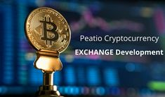 Discover Peatio Based Mobile Apps Crypto Exchange Development.  Looking for Peatio based mobile apps crypto exchange development? Well, it's an open-source and free solution available for all the cryptocurrency enthusiasts spread worldwide. Let us know your project requirement and we will be glad to help you.