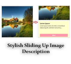 Stylish Sliding Up Image Description for Blogger | Blogger Trix | Blogger Tips and Tricks | Free Templates