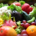 サウス パラダイス カフェ - 料理写真:富士山ろくの湧水で育った水耕レタスや、奈良の契約農家の有機野菜など、鮮度にこだわって各地から仕入れるこだわりのお野菜。コースやディナー、ランチでお楽しみ下さい。