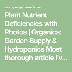 Plant Nutrient Deficiencies with Photos   Organica: Garden Supply & Hydroponics Most thorough article I've found!
