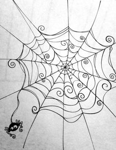 Spider web. Cute spider.