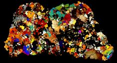NWA 4590 North West African meteorite thin section in polarized light