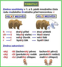 PŘÍDAVNÁ JMÉNA TVRDÁ Fifth Grade, School Projects, Kids And Parenting, Montessori, Homeschool, Language, Teaching, Education, Literatura