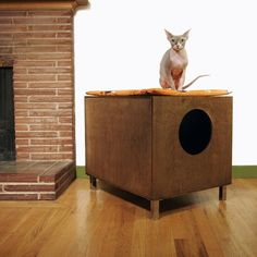 Modern cat litter box furniture. AND A SPHYNX!