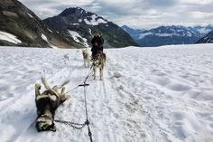 Your Typical Alaskan Flat Tire