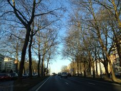 beautiful landscape on the Tervuren avenue Brussel, 30 Day, Beautiful Landscapes, One Pic, Country Roads, Pictures, Photos, Resim, Clip Art
