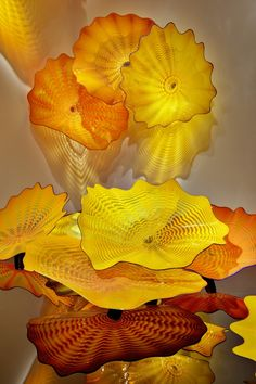 analogous palette (y, y-o, o) Dale Chihuly, glass
