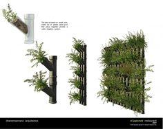 Como hacer un muro verde