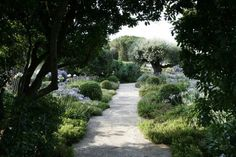 Allée de jardin en pierre