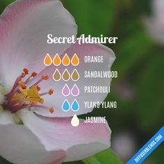 The ultimate essential oil blend software! Create your aromatherapy blends or search through our extensive list. Easily find what blends you can make based on the oils you have. Patchouli Essential Oil, Essential Oil Scents, Essential Oil Perfume, Essential Oil Diffuser Blends, Essential Oil Uses, Doterra Essential Oils, Young Living Essential Oils, Aroma Diffuser, Elixir Floral