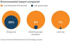 Comparing the environmental impact of conventional and laboratory beef production
