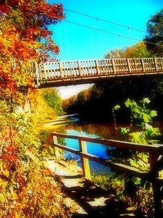Turkey Run State Park-Indiana
