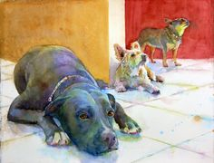From The Animal Kingdom Gallery of Kim Johnson. Love the color, composition, and personality of the dogs.