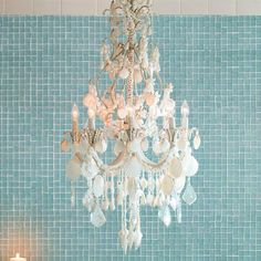 Harbor Shell Chandelier l A Gorgeous Combination of Crystals & Seashells l Sand Coated Metal Frame l www.CarolinaDesigns.com